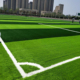 Economical waterproof outdoor artificial grass for indoor outdoor soccer football field and synthetic grass for soccer
