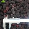 Wholesale Cheap Bulk Passed IFS New Crop Frozen Fruit Mulberry