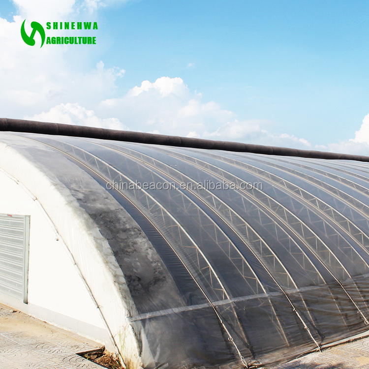 Sunlight Greenhouse Hot Galvanizing Structure