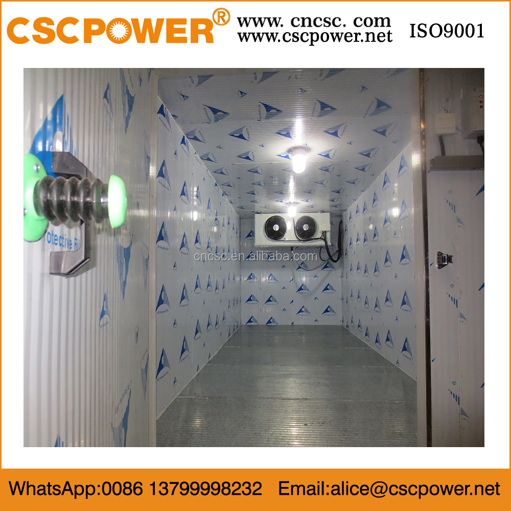 container cold room for fish cold storage with hot promotion