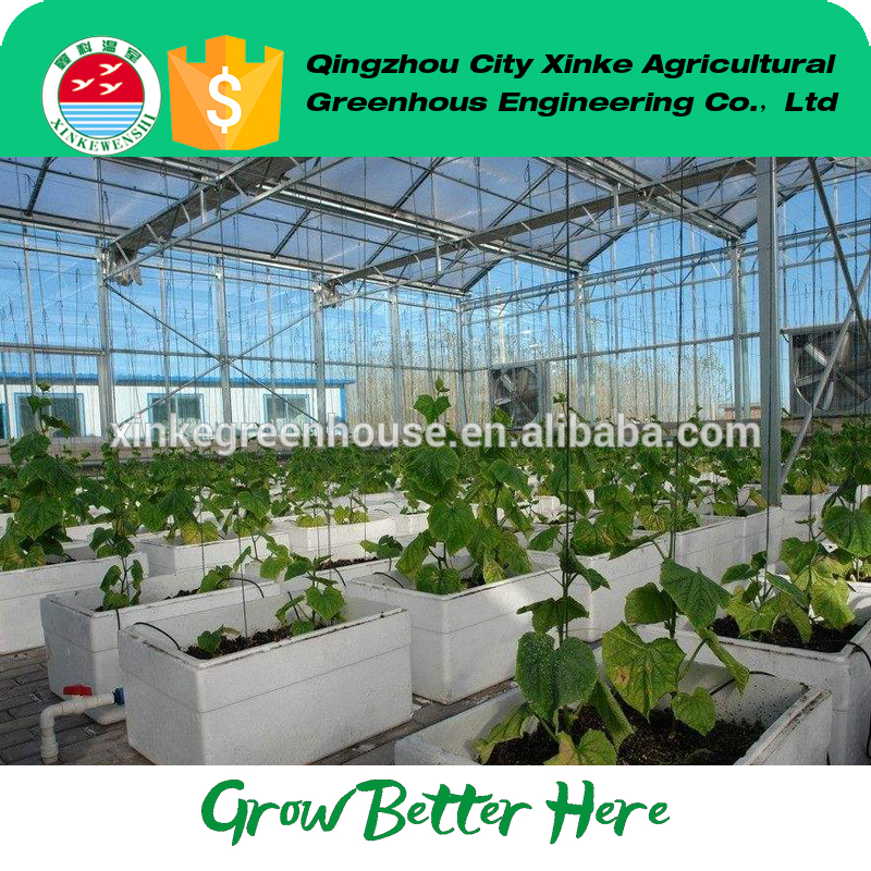 factory hot sales multi-span glss cover green house Exported to Worldwide