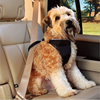 Fashionable best sell dog pet seat safety belt harness