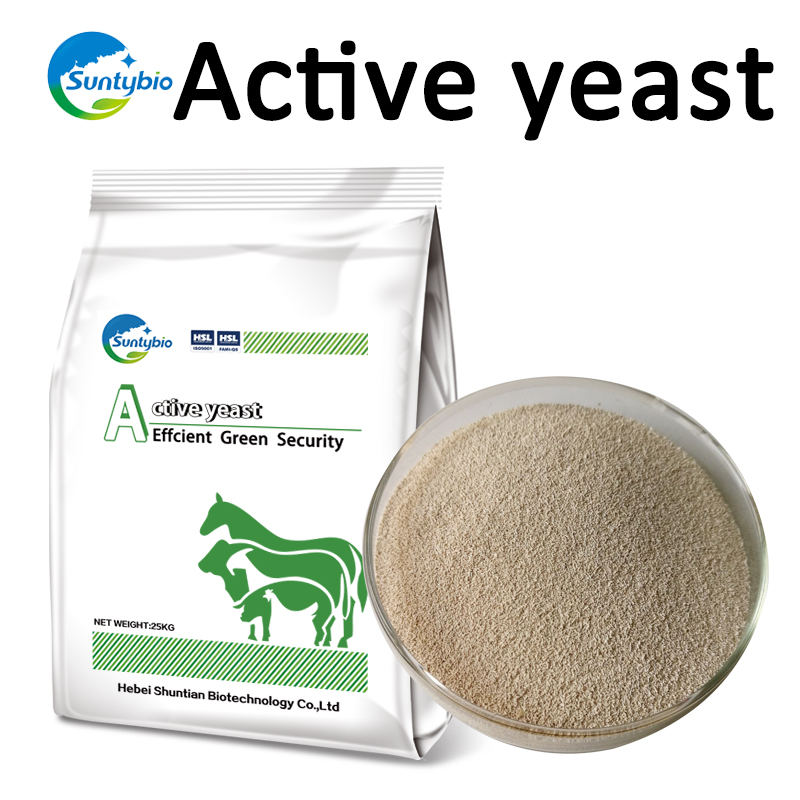 Manufacturing Active Dry Yeast Prices For Animal Feed Mill