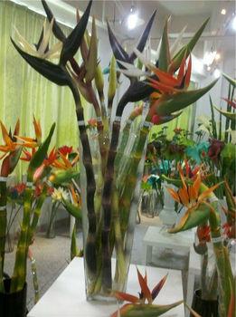 approvisionnement fleur artificielle oiseau de paradis plante buy oiseau artificiel de paradis. Black Bedroom Furniture Sets. Home Design Ideas