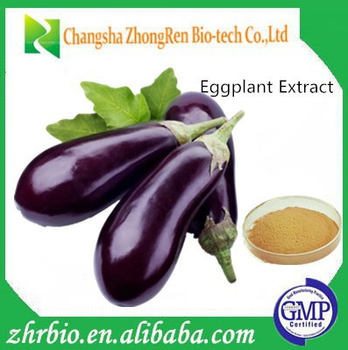 Supply Aubergine extract /Eggplant Extract Ratio extract 4:1,10:1,20:1
