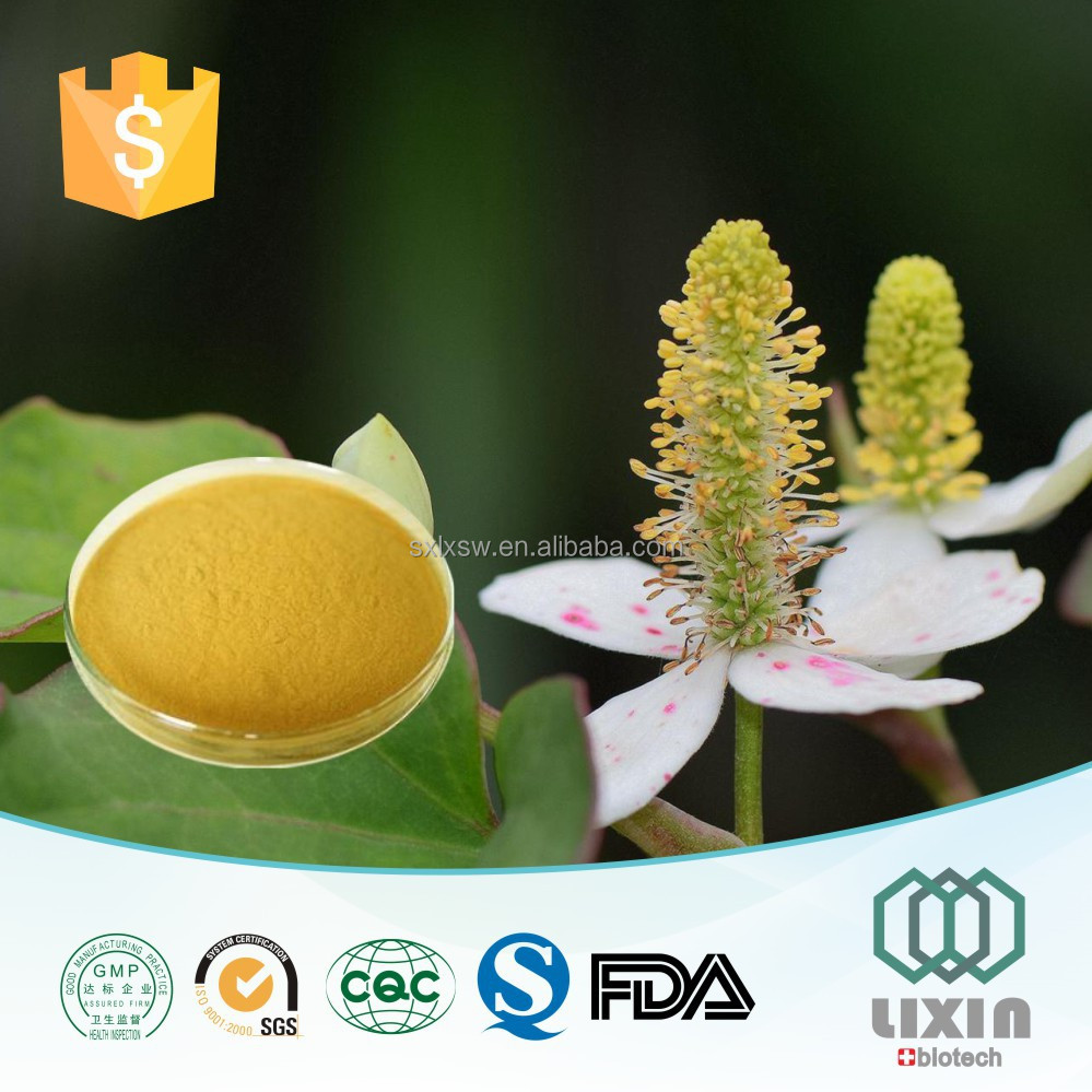 OEM factory Houttuynia Cordata extract powder Ration: 10:1 20:1