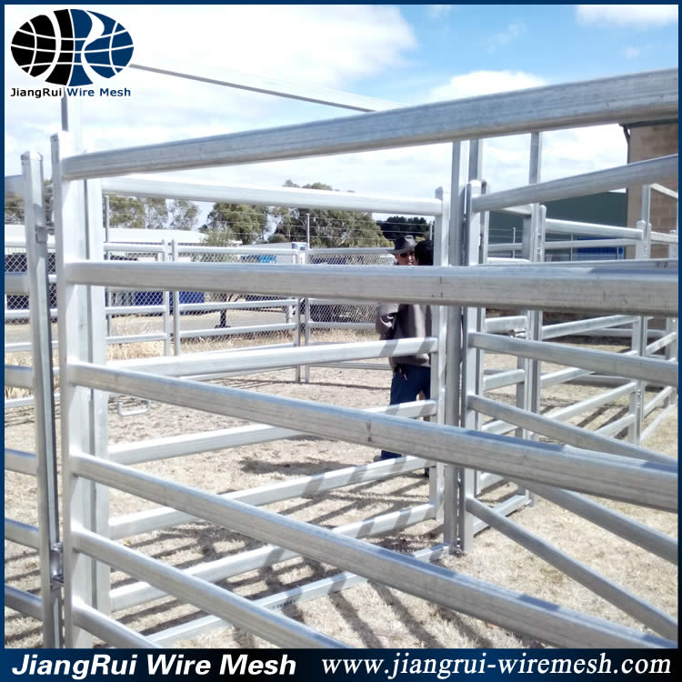 round pen 6 bar cattle panels / portable horse pens / livestock pan panels