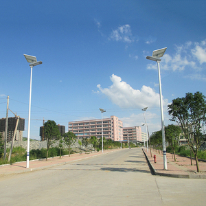 Shenzhen Factory Outdoor 30 Watt 40 Watt 50 Watt Solar Street Lights Luminary With Pole