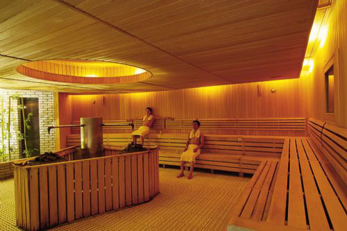 Degaulle cedar wood sauna;stone;sauna room accessories;mesda;sauna stove;dry steam equiment