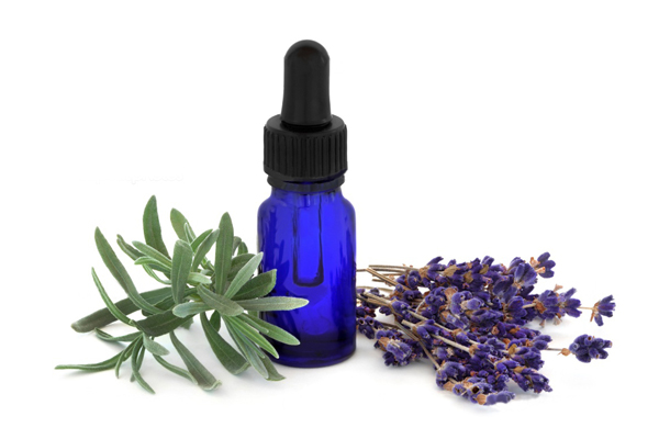 nature elements 100% pure lavender essential <strong>oil</strong>