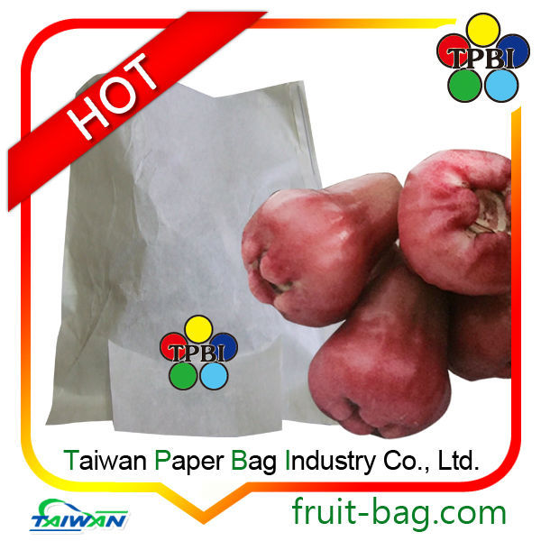 TPBI fabric bag Taiwan factory wax apple protection paper bag custom packaging