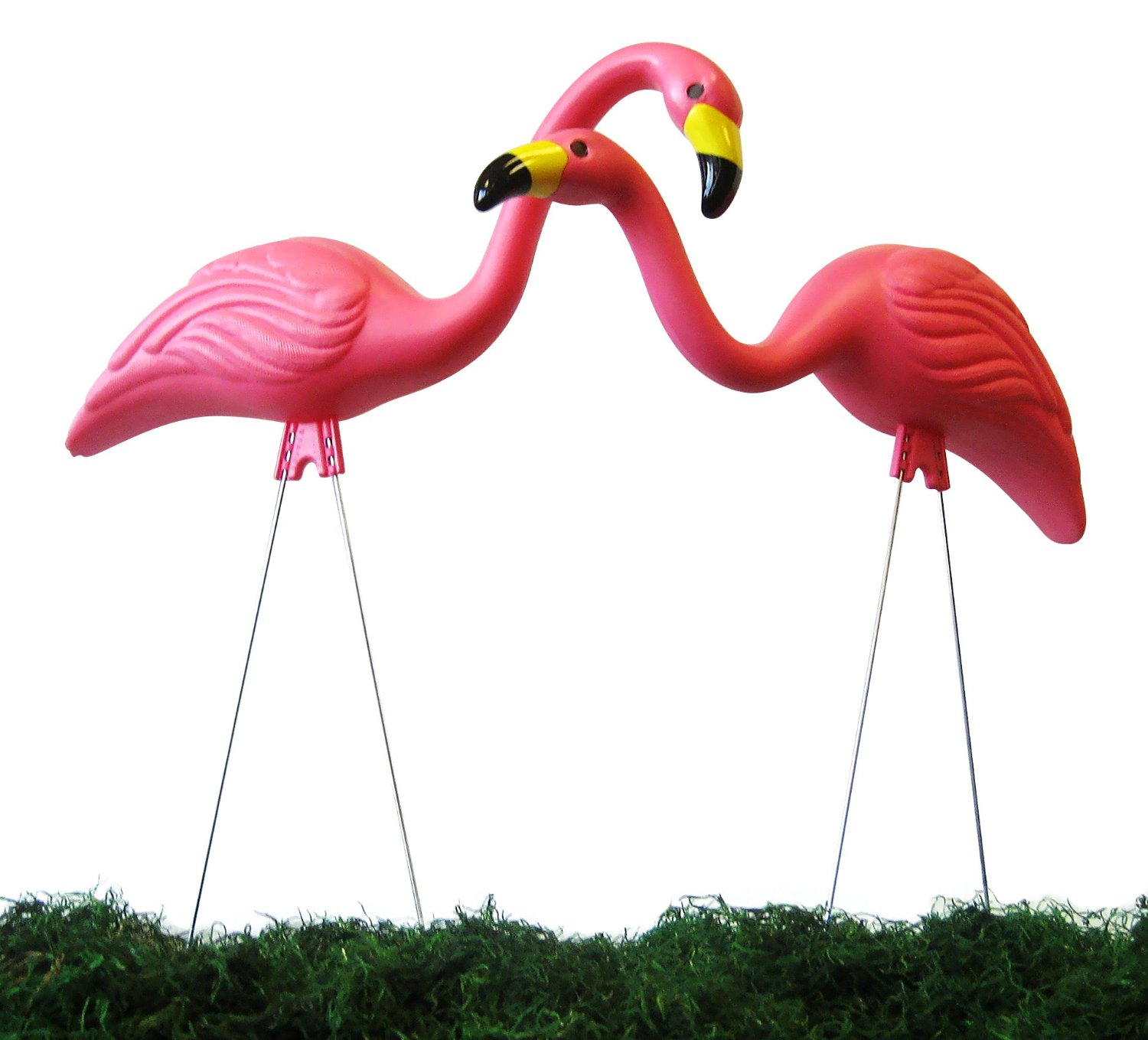 Cheap 2 Flamingos Find 2 Flamingos Deals On Line At