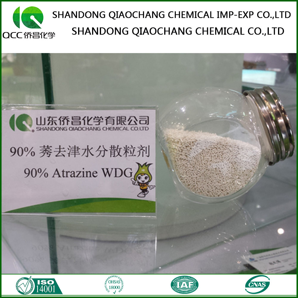 Popular Use Herbicide Atrazine 800 G/Kg Wp 500 G/L Sc For Maize