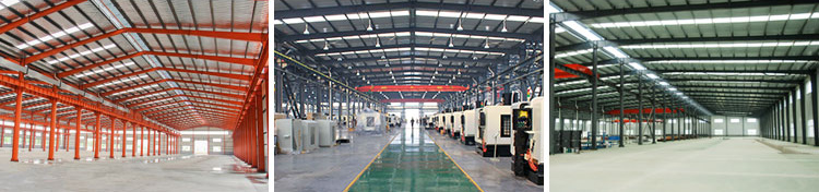 Professional Design Steel Fabrication Factory Shed Price