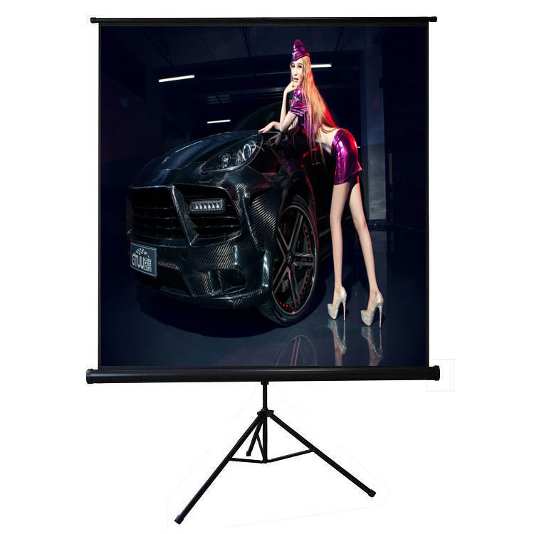 120 inch Tripod standing project screen