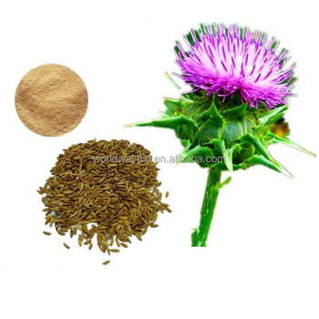 Healthcare natural Liver protecting powder Silybum marianum with silybin phospholipids ingredients from milk thistle extract