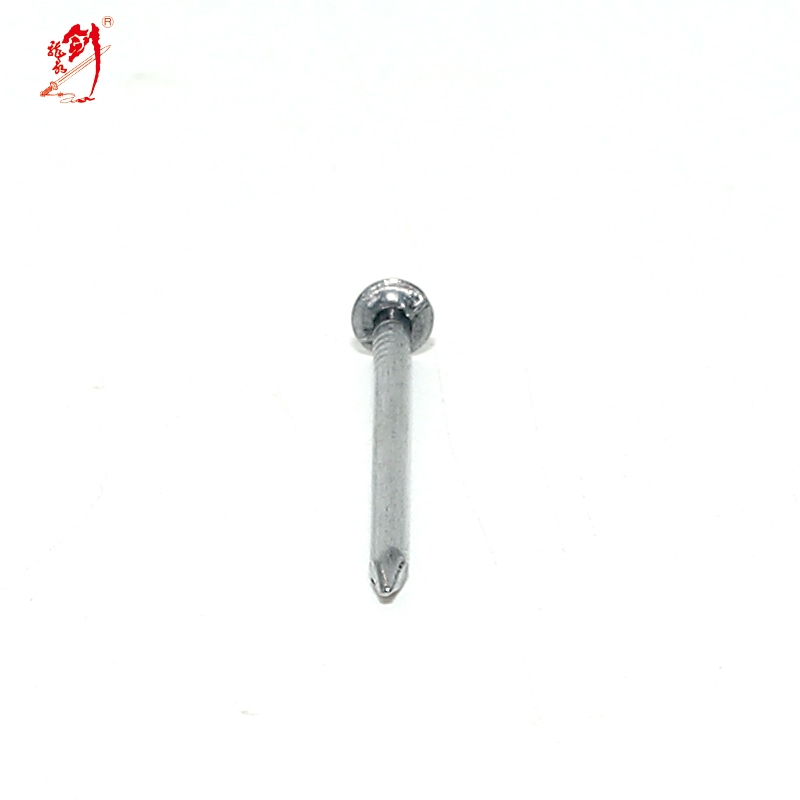 30 years factory common wire nail best price