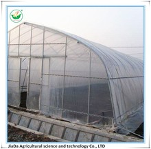 Greenhouse with galvanized steel pipe as its framework