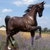 life size bronze horse statues for sale outdoor decorate