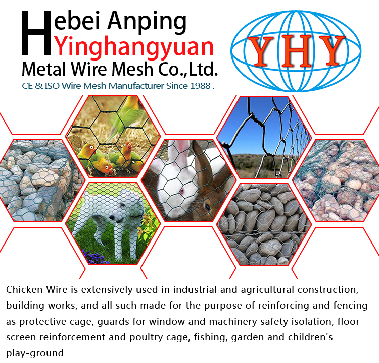 Chicken Wire Netting Nz/galvanized Hexagonal Wire Mesh - Buy