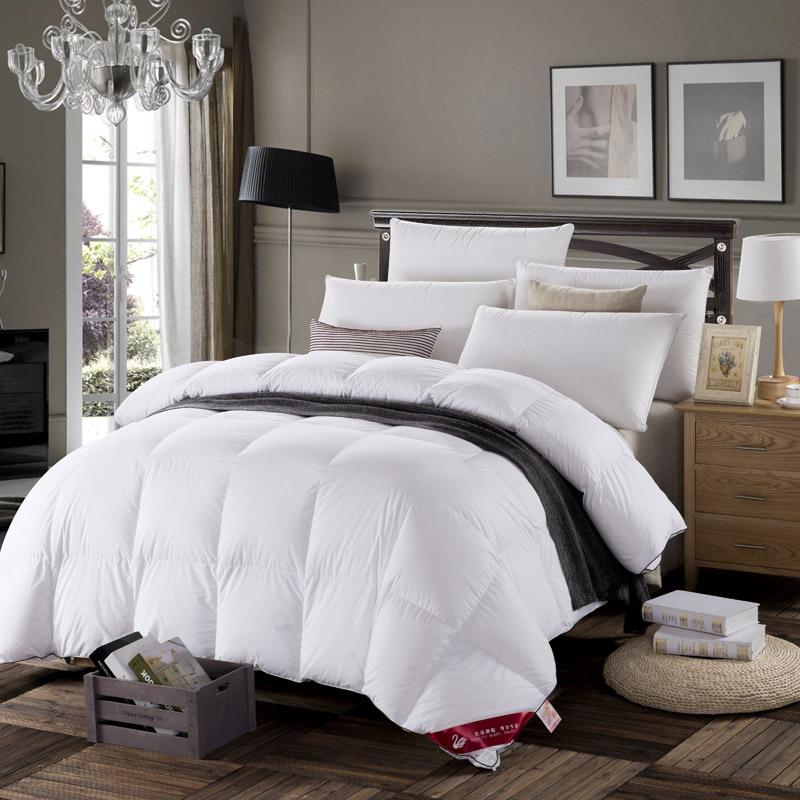 couette oie ou canard maison design. Black Bedroom Furniture Sets. Home Design Ideas