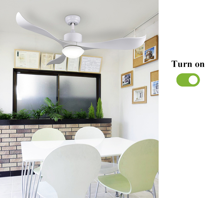 Fashion Design Household High Quality Multi-function Fancy Modern Ceiling Fan Light