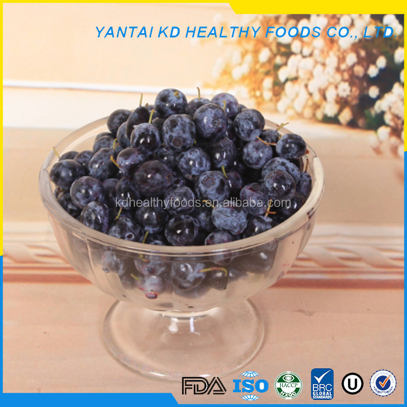 high quality frozen fresh blueberries
