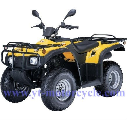 Fashionable big power off road adult 250cc quad bike for sale