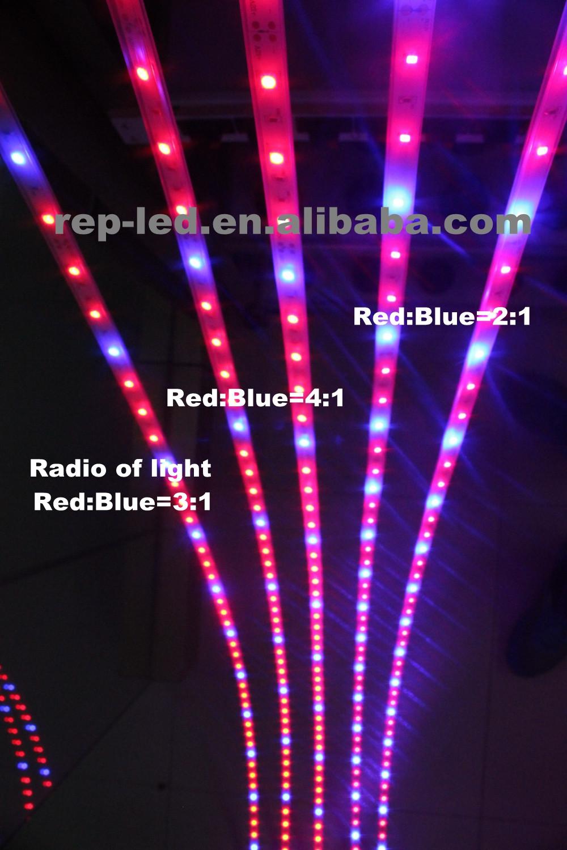 Led Manufacturing Plant Epistar Smd2835 Leds Infrared Light ...