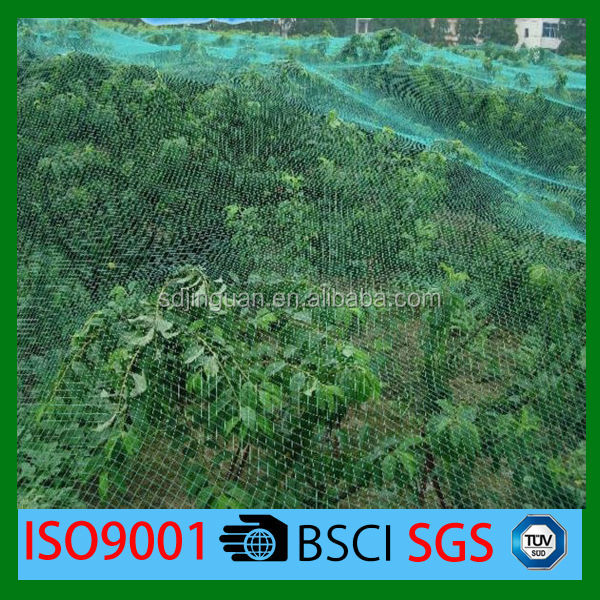 100% virgin plastic knitted strong anti bird net