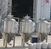 100l fermenter beer/used fermenter/fermenting machine price (CE approved)