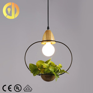 2018 new design china modern circular led hanging plant green chandelier