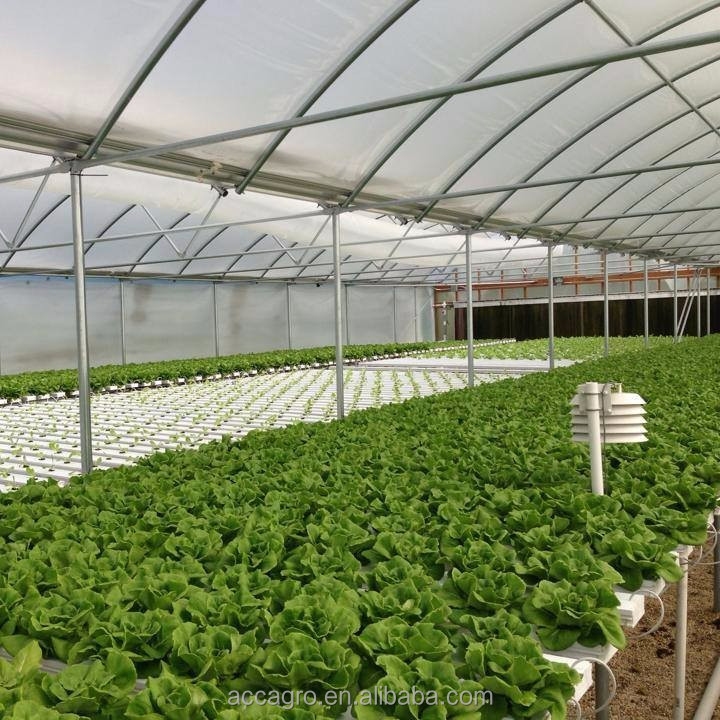 Commercial Greenhouses Nft Channel System For Aeroponics Hydroponic