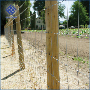 Factory supply grass land and farm guard of cattle fence