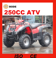 New 250cc automatic atv high quality (MC-356)