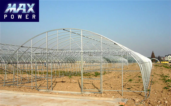 High Quality Low Price China Poly Tunnel Greenhouse