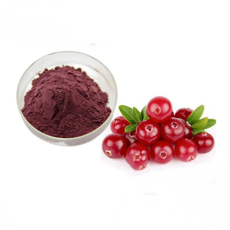Factory supply 100% natural high quality cranberry fruit  powder