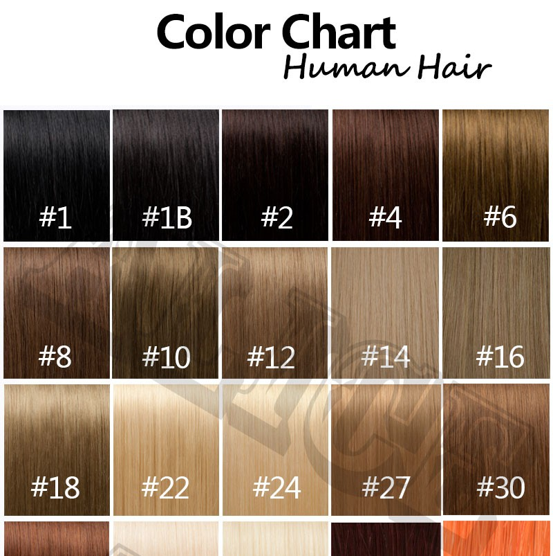 Human Hair Color Chart Extensions 31 Colors Colour Ring Extension