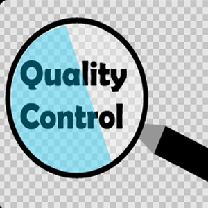 Shipment Inspection Services- Third Party Inspection 100% Quality Control Asia Quality Inspectors