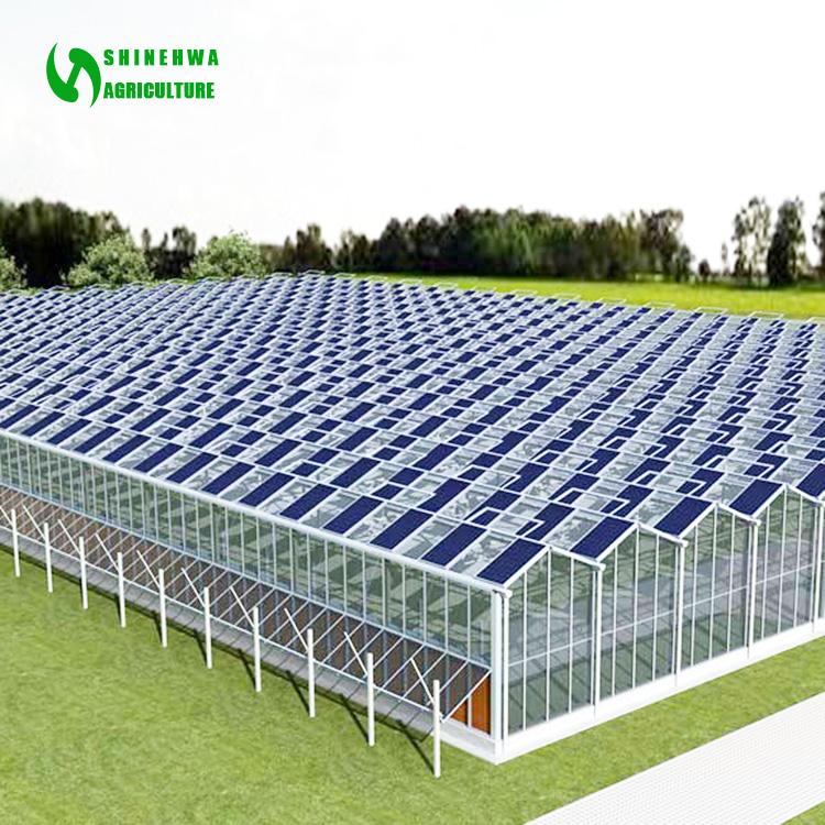 Photovoltaik Solar Gewachshaus Zum Verkauf Buy Solar Gewachshaus