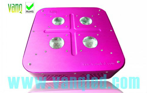 Newest version,integrated LED diodes,full light spectrums 300w led grow lamp