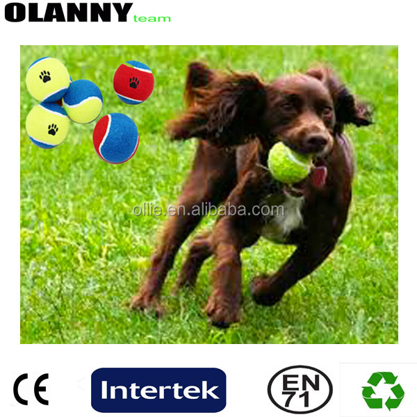 pet tennis ball low price ODM high quality ITF approved best supplier standard pack tennis ball