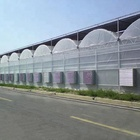 Automatic Shading System PO Film Cheap Multi-span Hydroponic Greenhouse