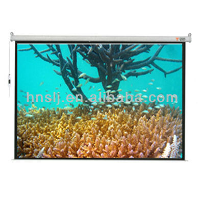 Fireproof 16:9 400 inch electric projector screens