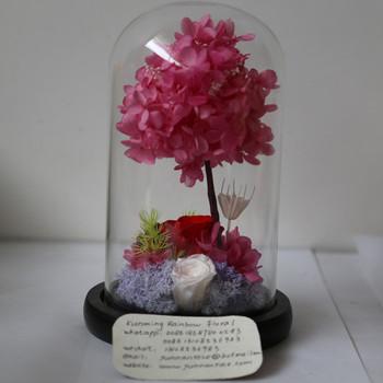 World Wide Popular Forever Rose In Glass Uk For Inertial Designer