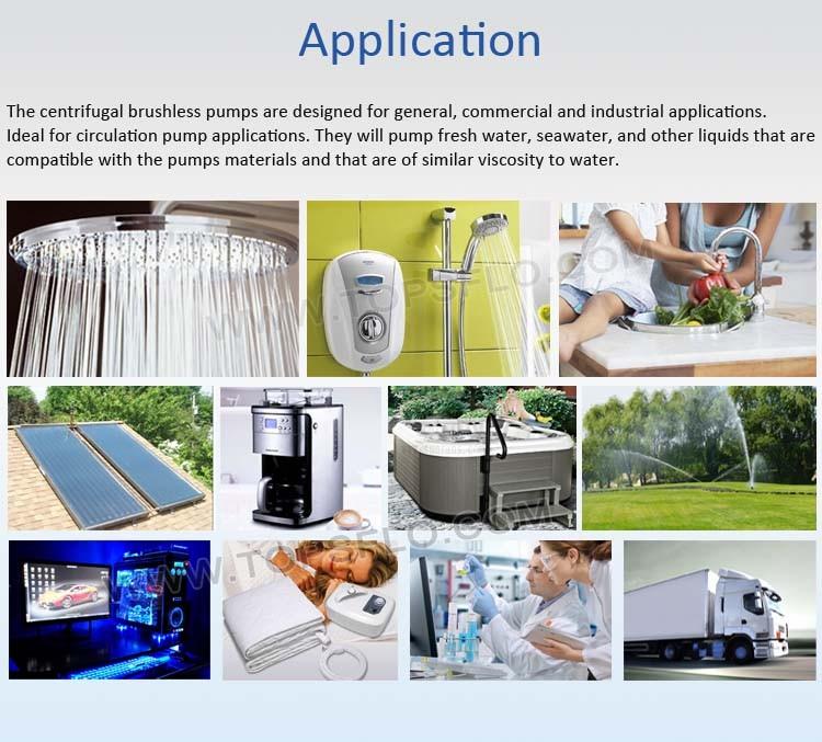 12v Water Centrifugal Hydrogen Oxygen Fuel Cell Pump