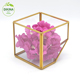 Cut Cube Triangle Diamond Square Large Round Vase :: Hanging Planter Terrarium Container :: crystal glass 2 inch flower pots