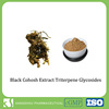 Joint health black cohosh root extract powder triterpene glycosides
