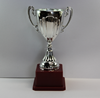 Chinese factory price cheap small plastic trophy cup wholesale high quality customized plastic trophy awards cups