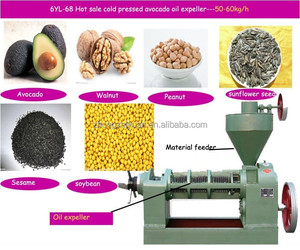 50-300T per day jatropha oil / crude jatropha oil / jatropha oil machine
